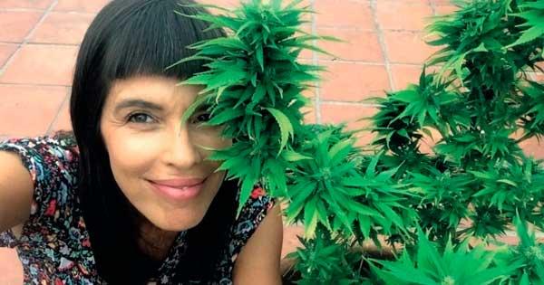 autocultivo de cannabis medicinal